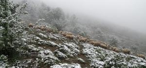Tokat'ta yaylalar beyaza büründü