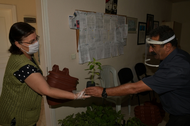 Çiğli'de vatandaşlar sebzesini evlerinde yetiştirecek Çiğli Belediyesinden vatandaşlara sebze fidesi