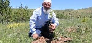 70'lik delikanlı köyüne 8 bin 500 ağaç dikti Sivas'ın Akıncılar ilçesinde yaşayan 70 yaşındaki Selim Petek, köyüne 14 yılda diktiği 8 bin 500 ağaçla adeta köyünü ormana dönüştürdü