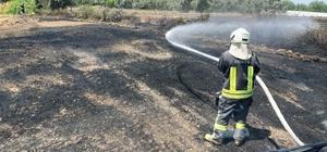 Seydikemer'de dört ayrı anız yangını paniğe neden oldu