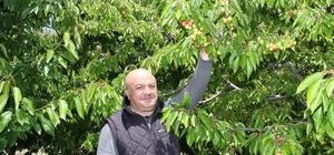 Uluborlu 17 bin dekar alanda kiraz hasadına hazırlanıyor Kiraz üreticisi bu sezon daha fazla rekolte bekliyor