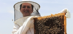 Bankacılığı bırakıp 'arıcı' oldu Yılda 3 buçuk ton bal üreten girişimci kadın ihracata hazırlanıyor
