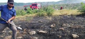Bingöl'de ormanlık alanda çıkan yangın, büyümeden söndürüldü