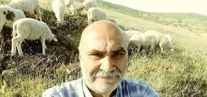 Koyun otlatmaya giden adam ölü bulundu