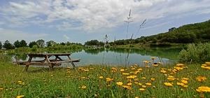 Saklı cennet 'Yeşil Göl' turizme kazandırılıyor Doğa manzarası ve güzelliği ile 'saklı cennet' olarak tabir edilen Yeşil Göl güzelliği ile göz kamaştırıyor