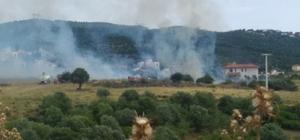 İzmir'de çalılık alanda yangın
