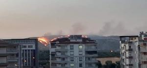 Zergil Dağı'ndaki orman yangını söndürüldü