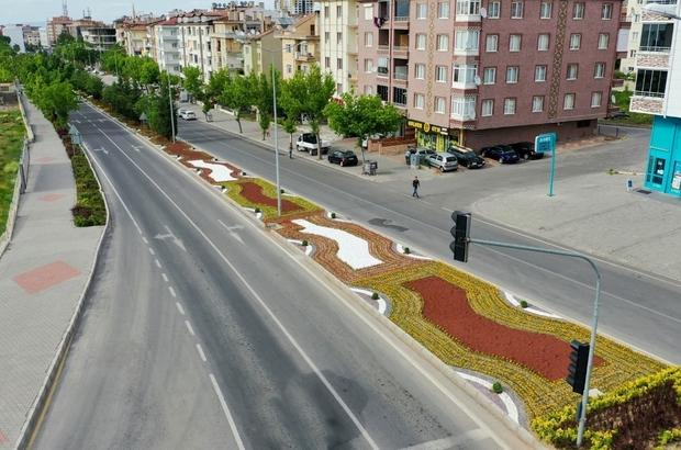 Nevşehir çiçek açıyor
