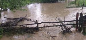 Seydiler'de metrekareye 38.58 kilogram yağış düştü