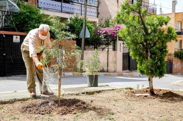 Çeyrek asırlık park gönüllüsü: Sami Amca 25 yıllık park gönüllüsünün adı ölümsüzleşti Buca'nın 25 yıllık park gönüllüsü Sami Güler