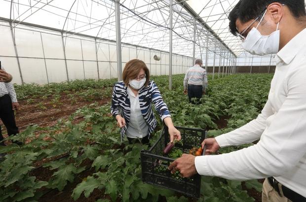 """Tarımsal Eğitim ve Yöresel Ürünler İşleme Merkezi ilk ürününü verdi """"Yöresel ürünleri eğitimle üreteceğiz"""""""
