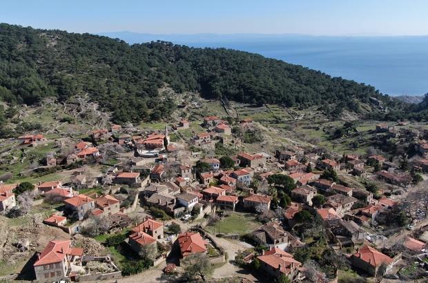 50 haneli köy 200 bin ziyaretçi ağırlıyor Yılda 200 bin ziyaretçi gelince köydeki işletmeler talebe yetişemiyor