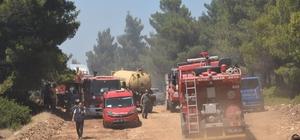 """İzmir'de korkutan orman yangını """"Ateş kartalı"""" müdahale etti, yangın daha fazla büyümeden kontrol altına alındı"""