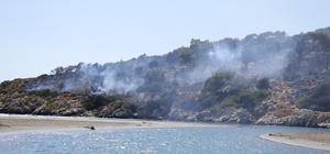 Seydikemer'deki orman yangınında 2 hektar alan zarar gördü