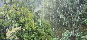 Yedisu'da sağanak yağış etkili oldu