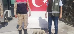 Van'da kafes avcılarına ceza Kaçak keklik avlayan 2 kişiye toplam 6 bin 304 TL idari para cezası kesildi