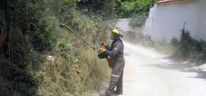 Karabağlar zararlı otlardan temizleniyor Menteşe Belediye ekipleri Karabağlar Yaylası yollarındaki araç ve yaya trafiğini olumsuz etkileyen çalılıkları ve otları temizliyor.