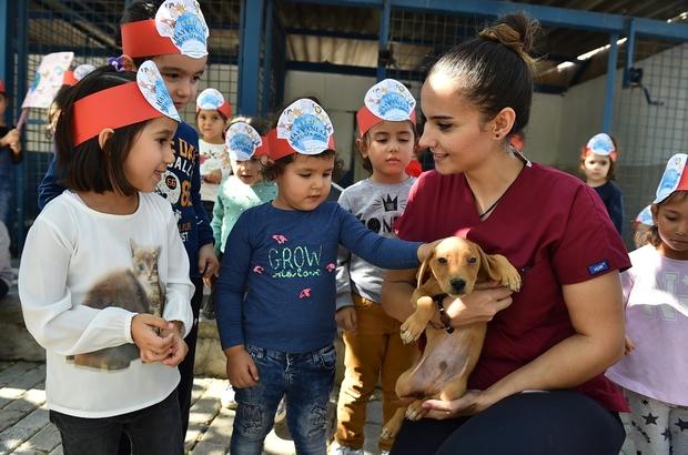 İzmir'de sokak hayvanları için Avrupa standartlarında merkez İzmir Büyükşehir Belediyesinden bin 500 köpeğe rehabilitasyon merkezi