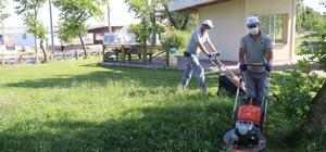 Ergene'de çim biçme ve ot kesme çalışmaları sürüyor