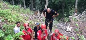 Artvin'in Borçka ilçesinde uçuruma düşen Orman Muhafaza memuru yaralandı