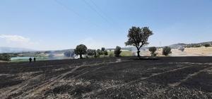 Uşak'ta korkutan yangın Elektrik telleri koptu, ormanlık alanda yangın çıktı