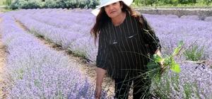 """56 yaşındaki kadın önce hayalini kurdu, sonra lavanta bahçesini oluşturdu Hayallerine lavanta bahçesi ile kavuştu Nevşehir'in ilk lavanta bahçesini kurdu Ayşe Köse, """"Hedefim Türkiye'nin bir numaralı lavanta bahçesini kurmak"""""""