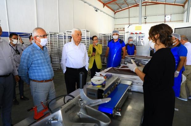 """Başkan Gürün, 'Meyve-sebze kurutma' tesisini gezdi Başkan Osman Gürün, Muğla Büyükşehir Belediyesi tarafından kurulan ve ürünlerin kurutulup, katma değerinin arttırılarak satışının yapılmasını sağlayan """"Meyve-Sebze Kurutma Tesisi'ni ziyaret etti."""