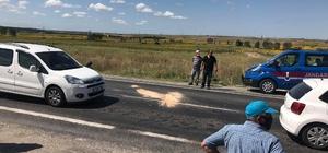 Kırklareli'de hafif ticari araç eşek arabasına çarptı: 1 ölü