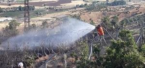 Bingöl'de iki ayrı noktada çıkan ormanı yangını söndürüldü