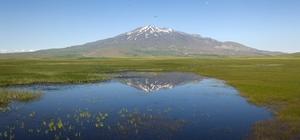 (Özel) Kuş Cenneti Cil Gölü'nün havadan görüntüsü hayran bırakıyor