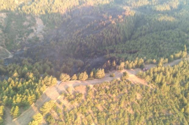 Yeniköy'deki orman yangını söndürüldü