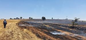 Uşak'ta çıkan yangında 100 hektar alan zarar gördü