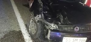 Türkeli'de otomobil büyükbaş hayvanlara çarptı: 2 yaralı