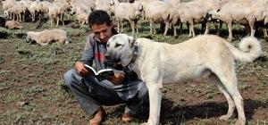 (Özel) Umut çoban, Alzheimer'a umut oldu Yaylalarda çobanlık yapan Umut'un gururlandıracak başarı hikayesi