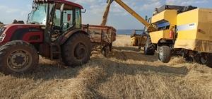 """Umdukları hasadı yapamadılar Besi hayvancılığının yoğun olarak yapıldığı bölgede yaygın olarak arpa, yulaf ve buğday ekiyorlar Daha önce 3-4 liradan katılan bir balya samanın fiyatı 7-8 lirayı yükseldi"""" Karaçam Mahalle Muhtarı İbrahim Turgut, """"Yasaklar sebebi ile tarlamıza yeterli alakayı gösteremedik"""" """"Devletimiz çiftçiye gerekli izinleri gösterse de ilaç, gübre gibi ihtiyaçlarımızı, esnaf kapalı olduğu için karşılayamadık"""" 40 yıllık çiftçi Hüdai Turgut; """"Zamanız yağmurlar belimizi büktü, eskiden 40 dekarlık arazimden 20 tona kadar çıkan verim bu sene 8 tonda kaldı"""" """"Tahılın yanında saman miktarının azlığı hayvanlarımıza vereceğimiz besinin kalitesine, bu da hayvanların kilosuna yansıyacak"""""""