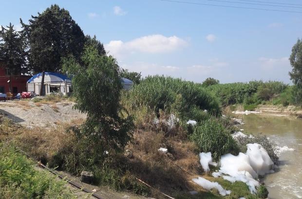 Tarsus'ta Kusun Deresi köpürdü Dereye dökülen atığın insan sağlığına zararı olup olmadığı yapılan incelemelerden sonra belirlenecek