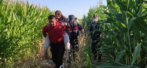 Kayıp yaşlı kadını mısır tarlasında 'Kahve' buldu Kahve isimli iz takip köpeği tarafından evinin yaklaşık 500 metre yakınlarında bulunan yaşlı kadın, jandarmanın sırtında evine götürüldü