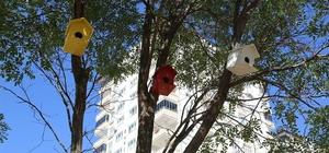 Kuşların yuvasını Şahinbey Belediyesi yapıyor