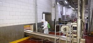 Ereğli Belediyesinden kesimhanelerde dezenfekte çalışması
