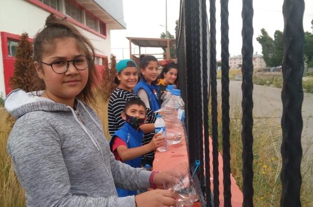 En genç gönüllüler sokak hayvanları için seferber