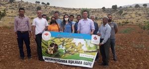 Siirt'te fıstık aşılama eğitimi