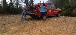 Adana'da orman yangını Yangında 3 dekar ormanlık alan zarar gördü