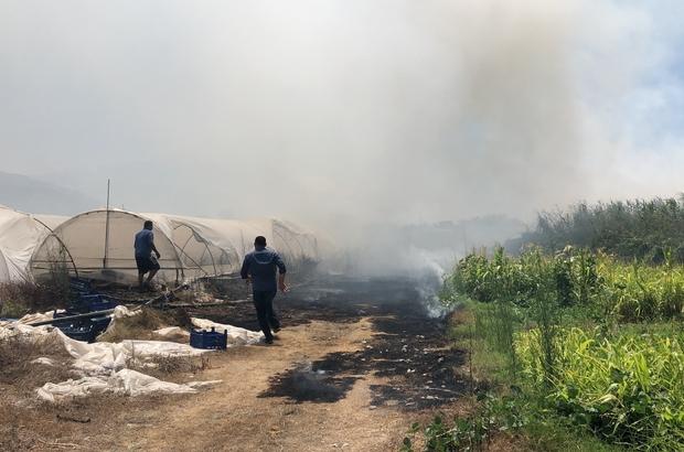 Hatay'da ot yangını seraları yaktı