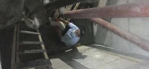 Havalandırma boşluğuna düşen yavru köpek kurtarıldı