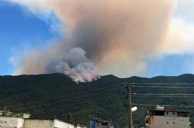 Aydın'daki yangın büyüyor Akçaova'da öğle saatlerinde başlayan orman yangınına havadan ve karadan müdahale sürüyor