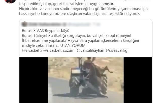 Vicdansızlığı yanına kalmadı Kurbanlık ineği traktörün arkasına asarak trafikte ilerleyen kişi, çekilen görüntülerin sosyal medyada paylaşılmasının ardından bulunarak cezai işlem uygulandı