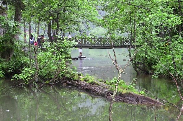Bayramda tatilcilere sağanak yağış sürprizi Borçka Karagöl bayramda ziyaretçi akınına uğradı