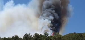 2 farklı noktada çıkan orman yangınına havadan ve karadan müdahale ediliyor.