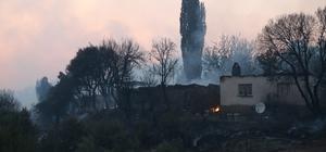 Ahmetli'deki orman yangınının hasar tespit çalışmaları başladı