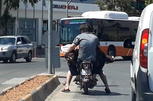 Motosiklete iki kişi ve bir koyun bindiler Gaziantep'te kurban bayramının son günü kameralara yansıyan görüntü gülümsetti